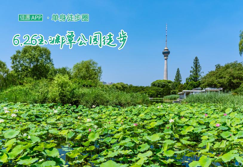 6.26玉渊潭公园徒步,4公里环湖滨水绿道,遇见夏日初荷