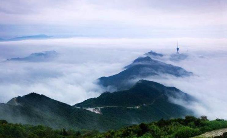 登深圳最高的山梧桐山,自然风光无限好